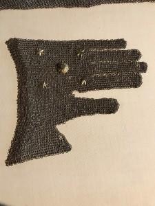 Handschuh Wildegg